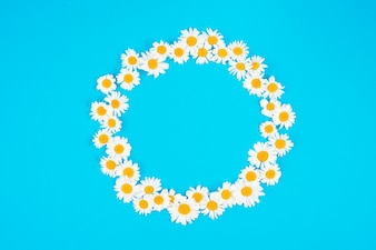 Circle of cute spring flowers