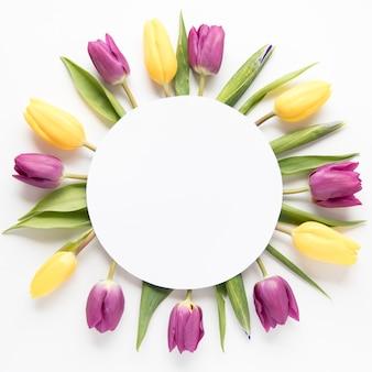 Круг на тюльпанах Premium Фотографии