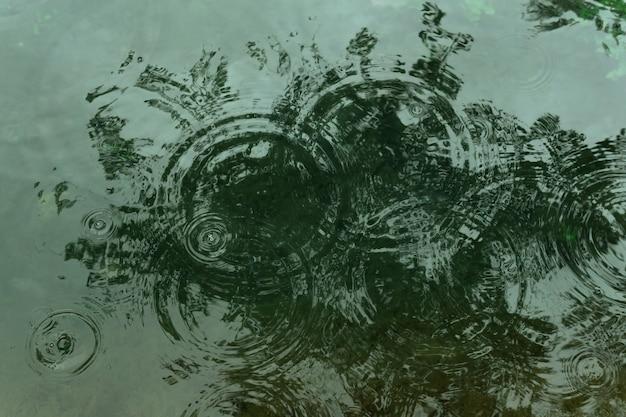 Круги из капель дождя на водной глади мелкого пруда