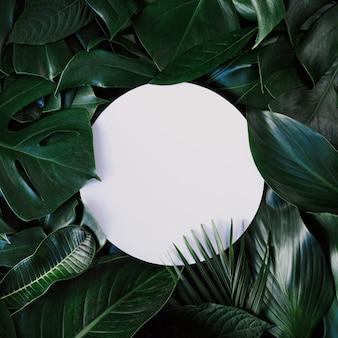 Круговой вырез с зелеными листьями.