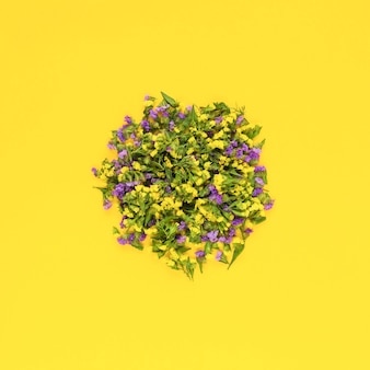 Circular flowers on yellow background
