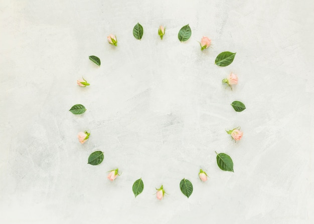 Circular frame made with rose and green leaves on concrete wall