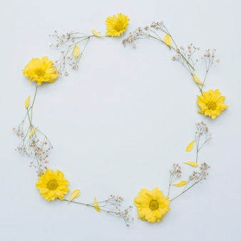 Circular frame made with yellow flowers isolated on white background
