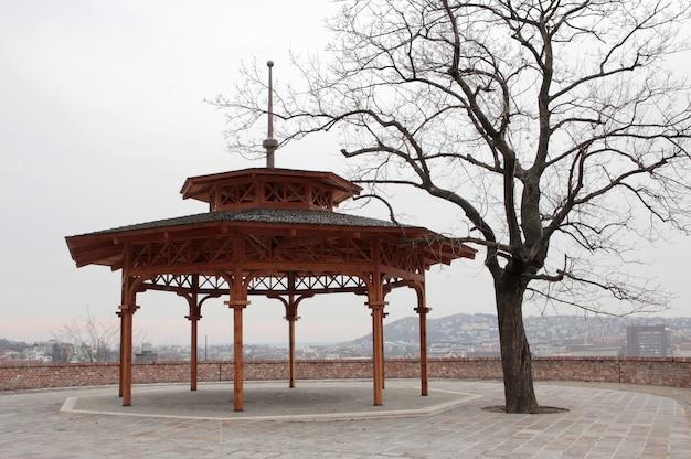 Круглая металлическая конструкция у дерева под пасмурным небом