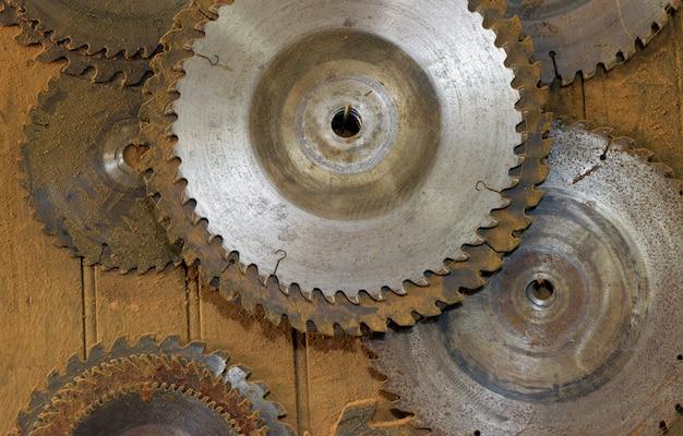 Circular saws of various diameters hanging on carpentry shelf