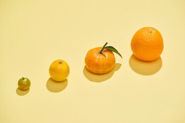 淡い黄色の背景に柑橘系の果物。きんかん、レモン、みかん、オレンジはイエローの上に