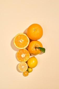 白い背景に柑橘系の果物。きんかん、レモン、みかん、オレンジはパステル背景