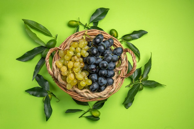 Agrumi agrumi con foglie intorno a cesto d'uva