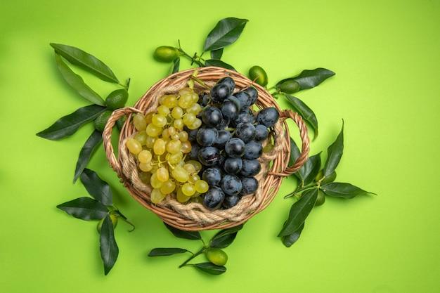 柑橘系の果物ブドウのバスケットの周りの葉を持つ柑橘系の果物