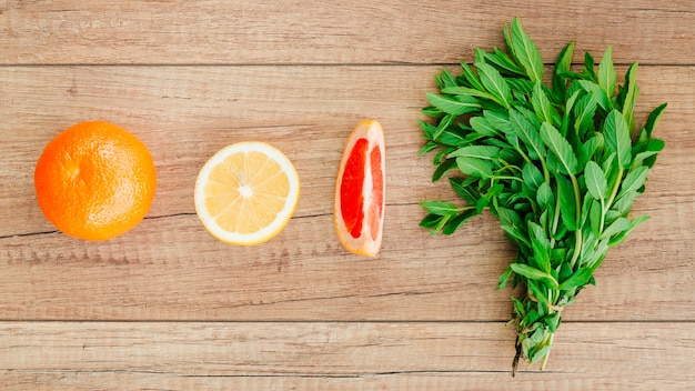 Citrus fruits and mint in row