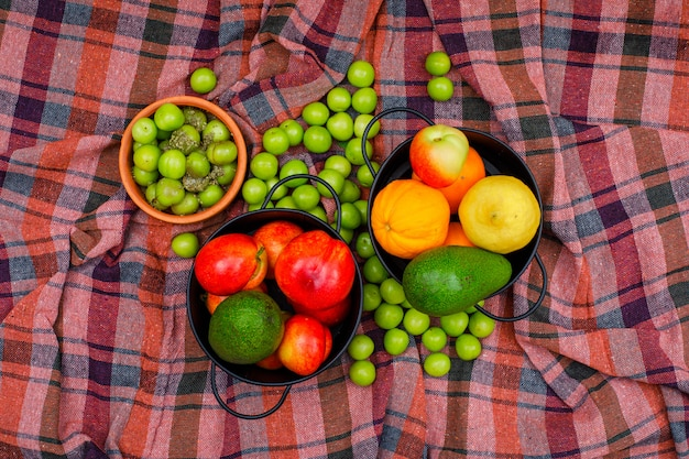 Citrus fruits in a two saucepans and bowl on picnic cloth, top view.