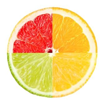 柑橘類のスライス