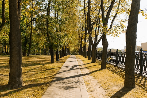 City alley in autumn in the park