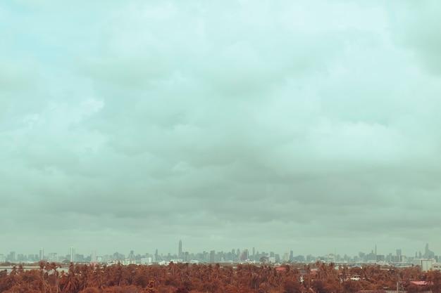 Город. архитектурные современные здания в панорамном виде на фоне. природная зона дерева. природа и современная городская жизнь. городская концепция. идея зонирования сохранить окружающую среду