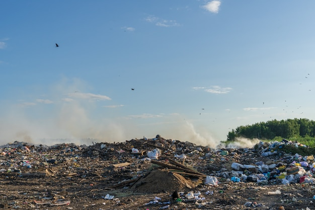 City dump with different garbage burns on a sunny summer day