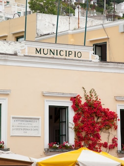 City hall capri