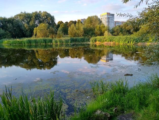 夏の夜の市の湖