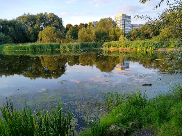 City lake in the summer evening