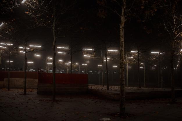 霧の夜の街の明かり