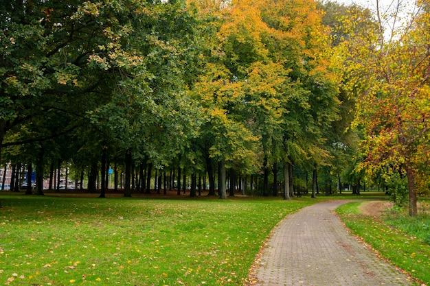 아인트호벤, 가을, 네덜란드의 도시 공원. 경치.