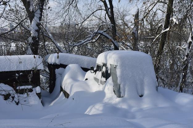 겨울에 눈이 내리는 도시 공원