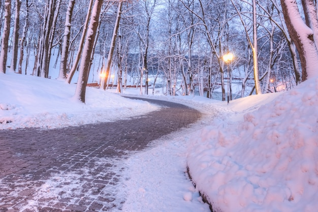 City park in winter with a pedestrian stone alley