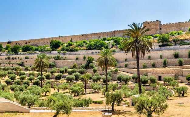 Городские стены иерусалима над долиной кедрон - израиль
