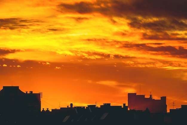Cityscape with vivid fiery dawn. amazing warm dramatic cloudy sky above dark silhouettes of city buildings. orange sunlight. atmospheric  of sunrise in overcast weather. copyspace.