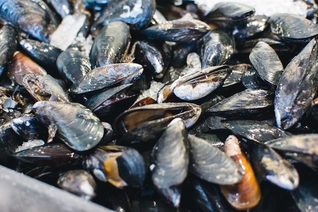 Моллюски на рыбном рынке