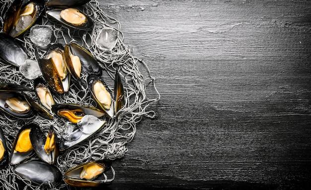 漁網のアサリ。黒い木製の背景に。テキスト用の空き容量。上面図