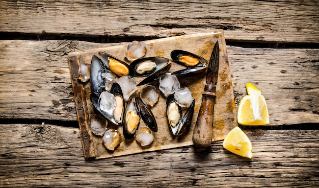 Clams with lemon and ice on a wooden board. on wooden background. top view