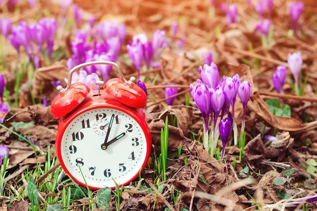 봄 꽃 배경 위에 클래식 알람 시계