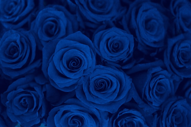 Classic blue is the color of the year 2020 - natural flowers background