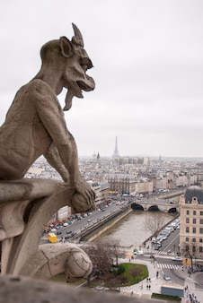 Classic chimera view of paris from notre dame