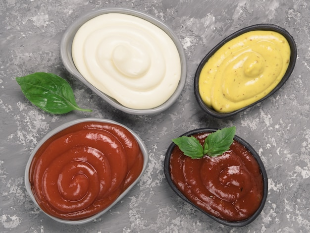 Classic sauces set on gray