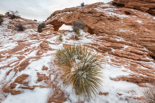 유명한 메사 아치, canyonlands 국립 공원, 유타, 미국의 클래식보기