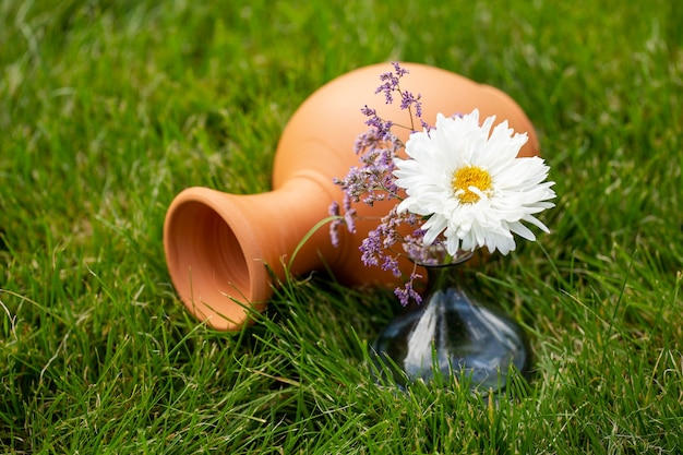 A clay jug and a vase with a flower on the green grass