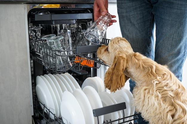 キッチンの食器洗い機で食器をきれいにします。