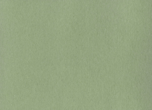 Clean green kraft cardboard paper surface texture