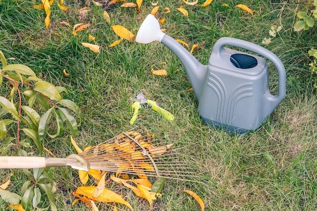 Осенняя уборка газона граблями. лейка, секатор и зеленая трава на заднем плане.