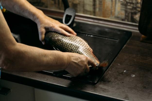 집에서 물고기 청소하기