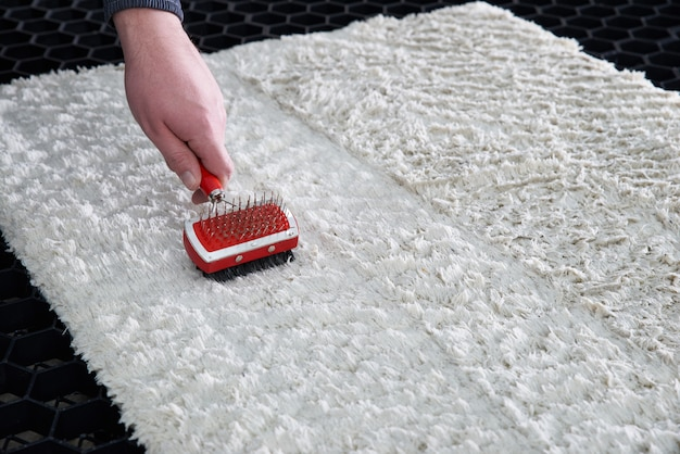Cleaning wet carpet with metal brush in cleaning service