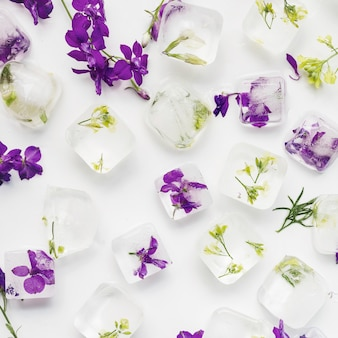Clear ice cubes with plants and flowers