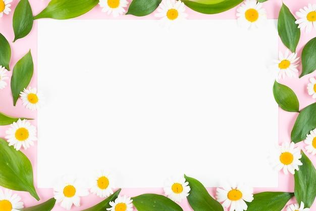 Очистить список с ромашками и листьями в рамке