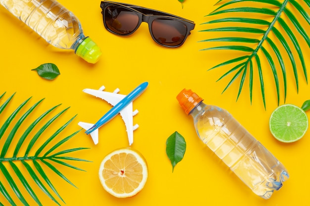 Clear water bottle and toy plane. tourism and clear water concept