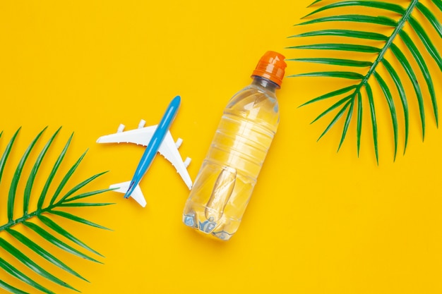 Clear water bottle and toy plane with palm leaves