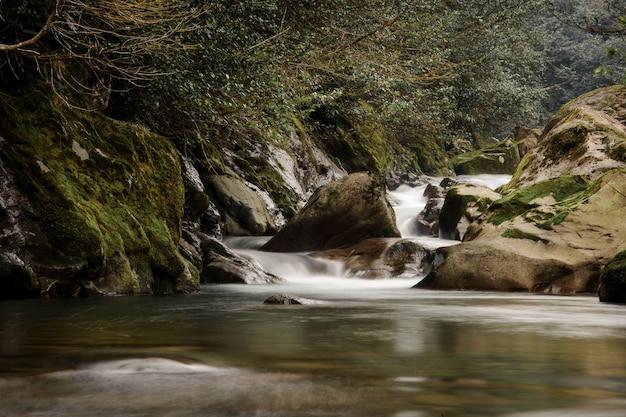 조지아의 아프로디테 온천에서 이끼로 덮인 돌에서 떨어지는 야생 산 강의 맑은 물