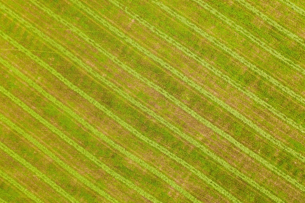 Cleared fields on the farm taken from above by a drone