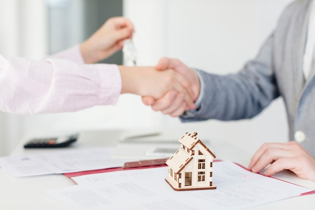 Client and estate agent making deal