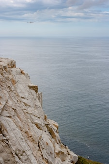 大西洋に面したコルアのガリシア沿岸の崖。